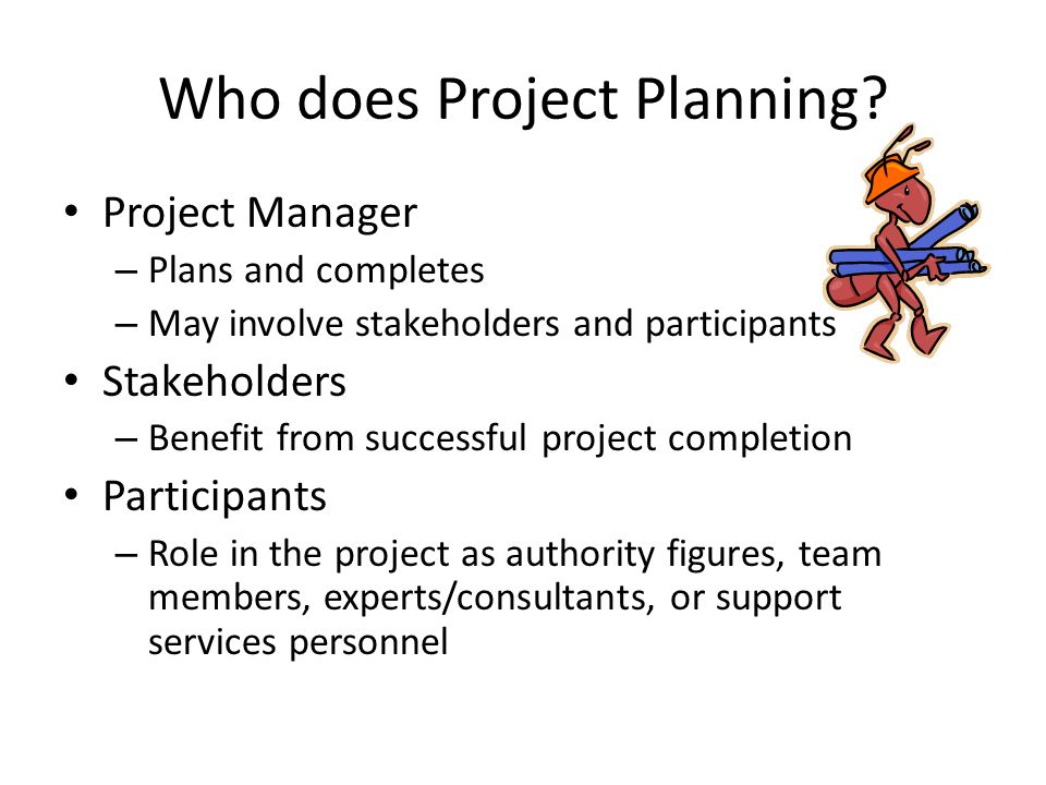 Who does Project Planning.
