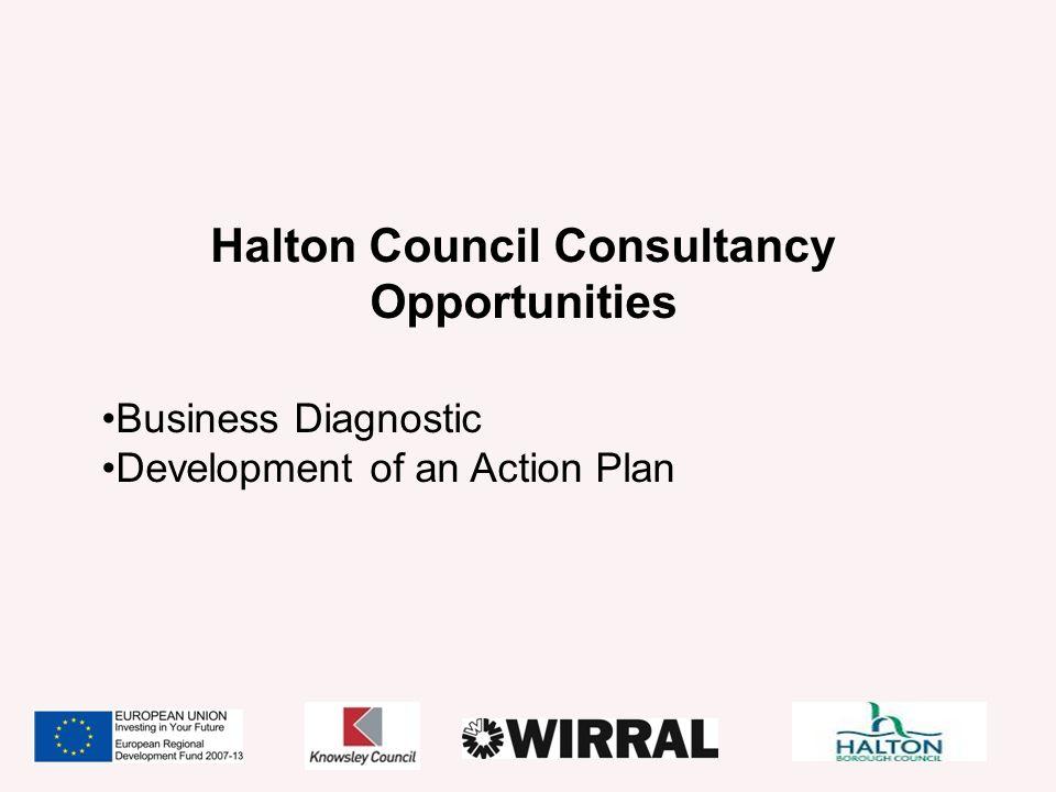 Halton Council Consultancy Opportunities Business Diagnostic Development of an Action Plan