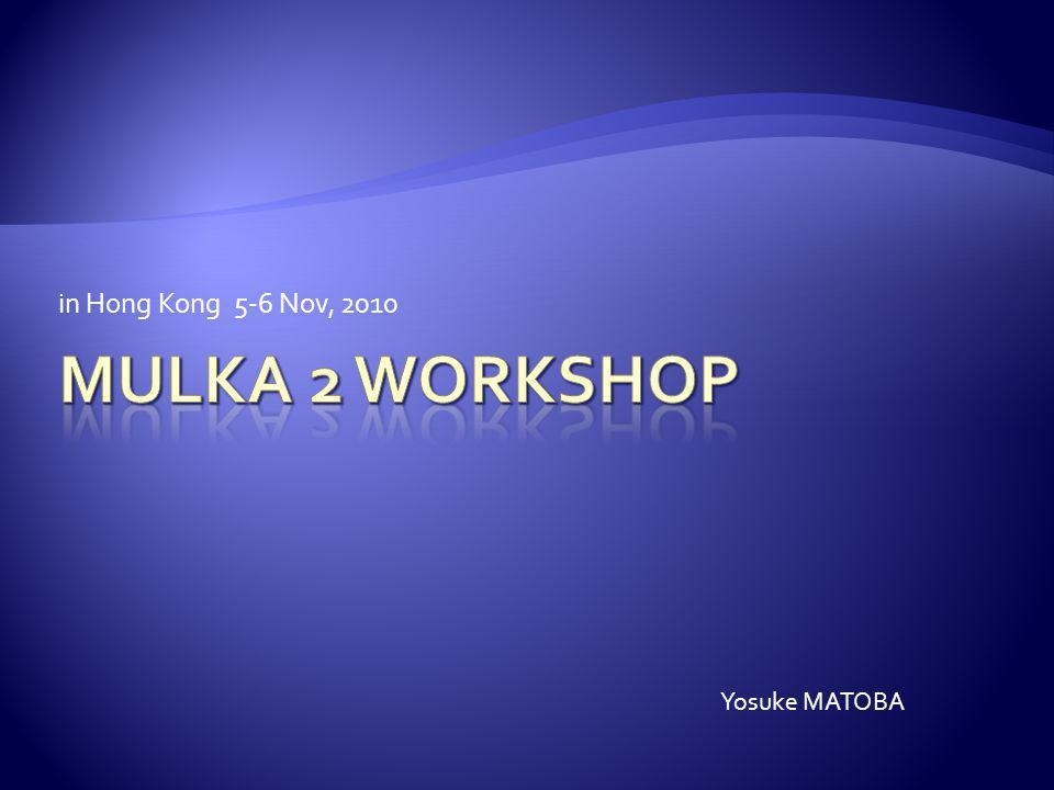 in Hong Kong 5-6 Nov, 2010 Yosuke MATOBA