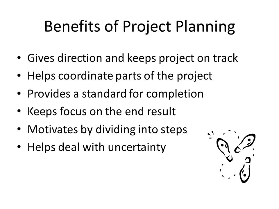 Developing a Project Plan What are my objectives.List goals.