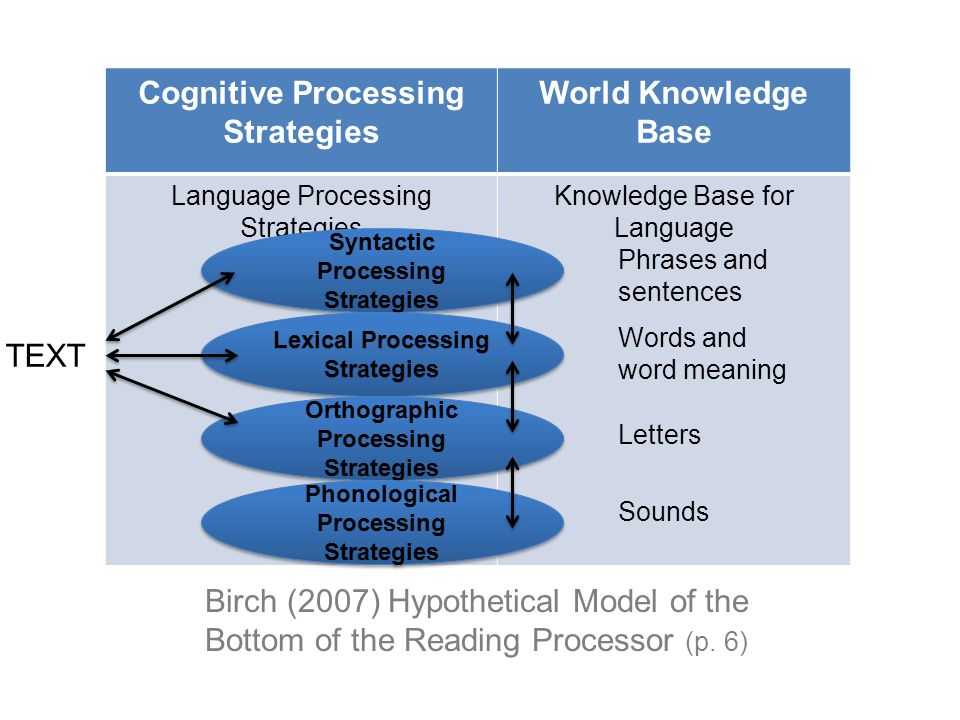 Cognitive Processing Strategies World Knowledge Base Language Processing Strategies Knowledge Base for Language Birch (2007) Hypothetical Model of the