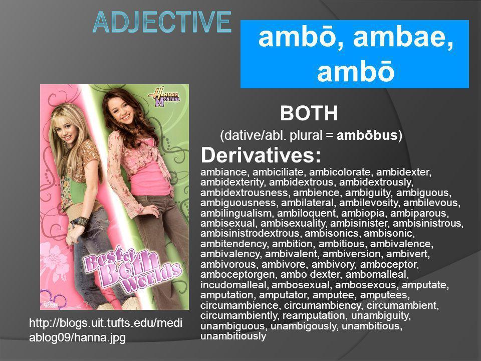 ambō, ambae, ambō BOTH (dative/abl. plural = ambōbus) Derivatives: ambiance, ambiciliate, ambicolorate, ambidexter, ambidexterity, ambidextrous, ambid