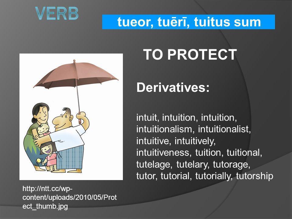 tueor, tuērī, tuitus sum TO PROTECT Derivatives: intuit, intuition, intuition, intuitionalism, intuitionalist, intuitive, intuitively, intuitiveness,