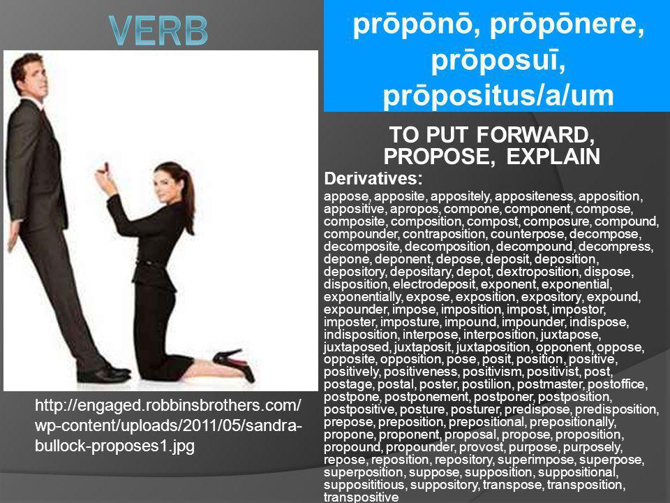 prōpōnō, prōpōnere, prōposuī, prōpositus/a/um TO PUT FORWARD, PROPOSE, EXPLAIN Derivatives: appose, apposite, appositely, appositeness, apposition, ap
