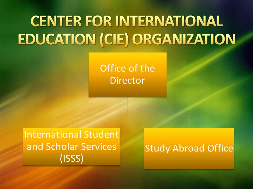 Office of the Director International Student and Scholar Services (ISSS) Study Abroad Office