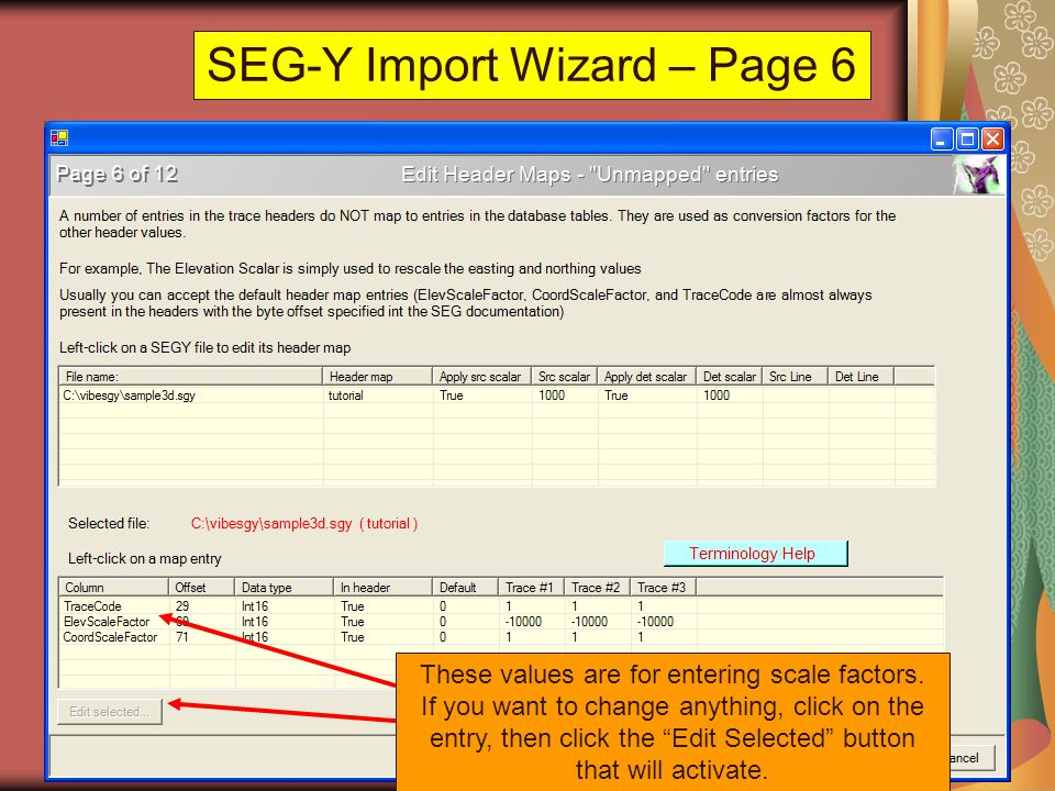 SEG-Y Import Wizard – Page 6 These values are for entering scale factors. If you want to change anything, click on the entry, then click the Edit Sele
