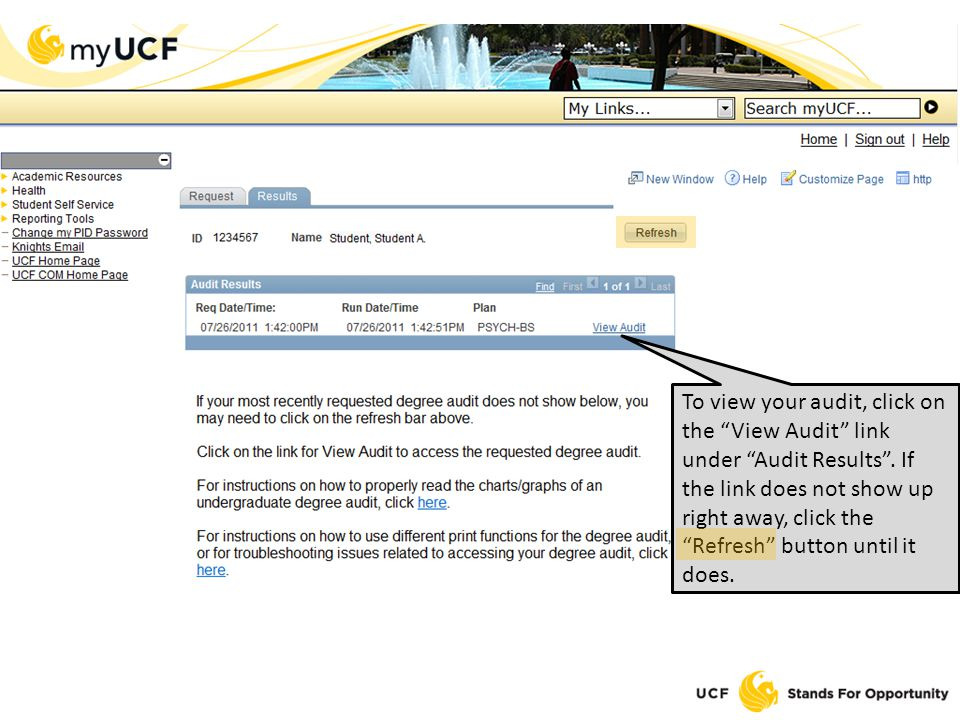 To view your audit, click on the View Audit link under Audit Results.