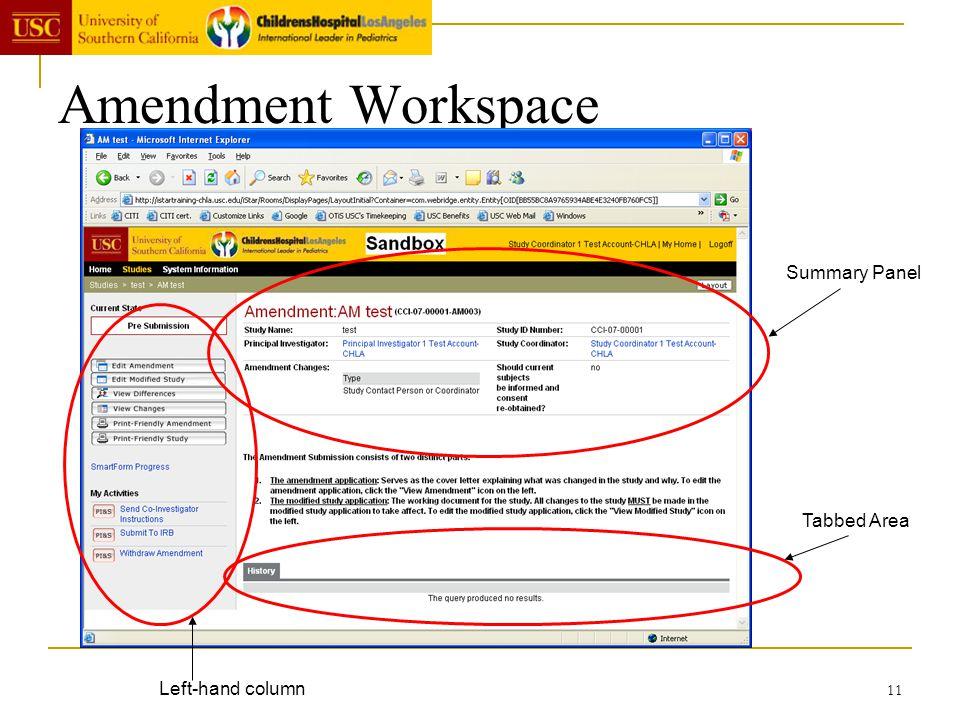 11 Amendment Workspace Summary Panel Left-hand column Tabbed Area