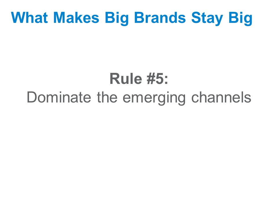 September 17, 2009 What Makes Big Brands Stay Big Rule #5: Dominate the emerging channels