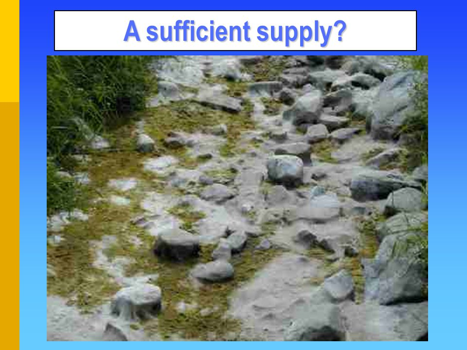 A sufficient supply?