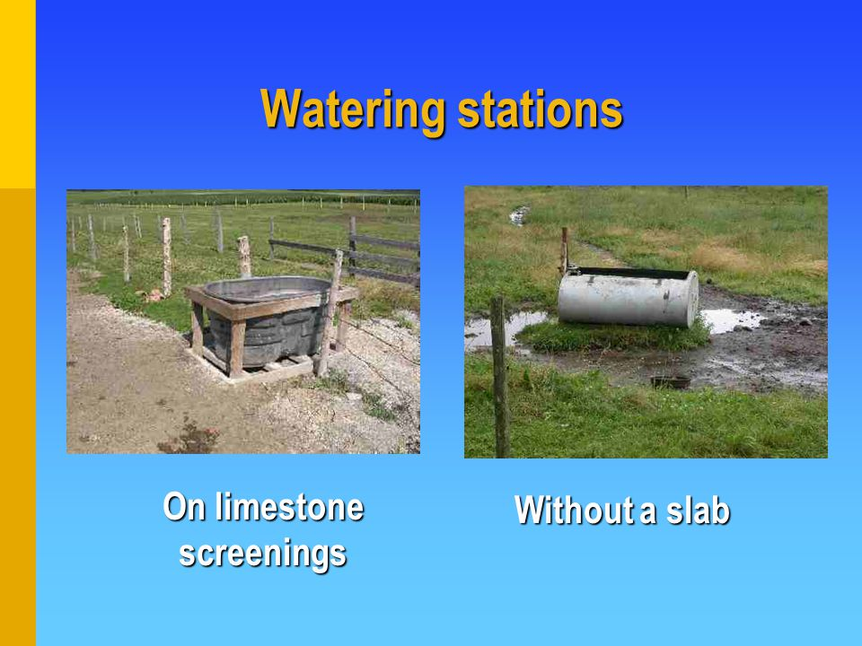 Watering stations On limestone screenings Without a slab