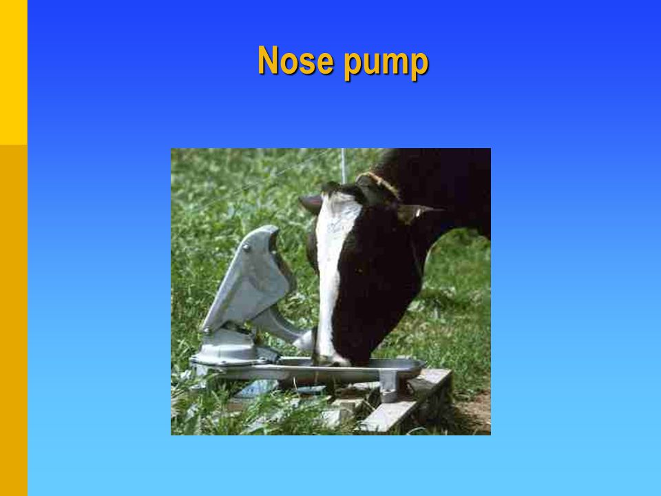 Nose pump