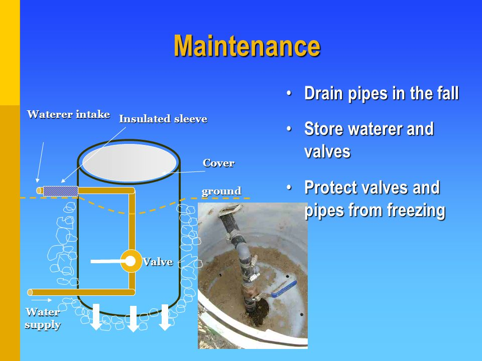 Drain pipes in the fall Drain pipes in the fall Store waterer and valves Store waterer and valves Protect valves and pipes from freezing Protect valves and pipes from freezing Maintenance Insulated sleeve Waterer intake Water supply ground Valve Cover