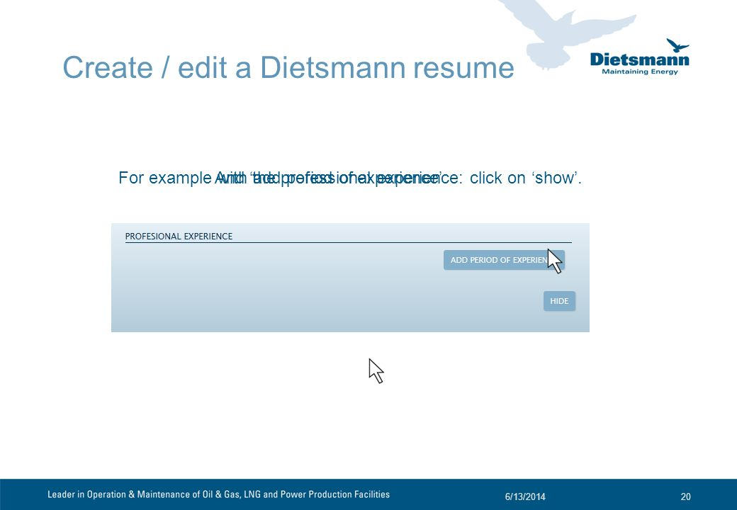 Create / edit a Dietsmann resume For example with the professional experience: click on show.