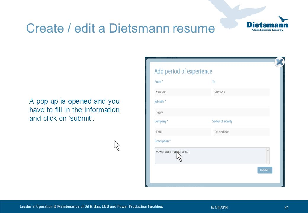 Create / edit a Dietsmann resume A pop up is opened and you have to fill in the information and click on submit.