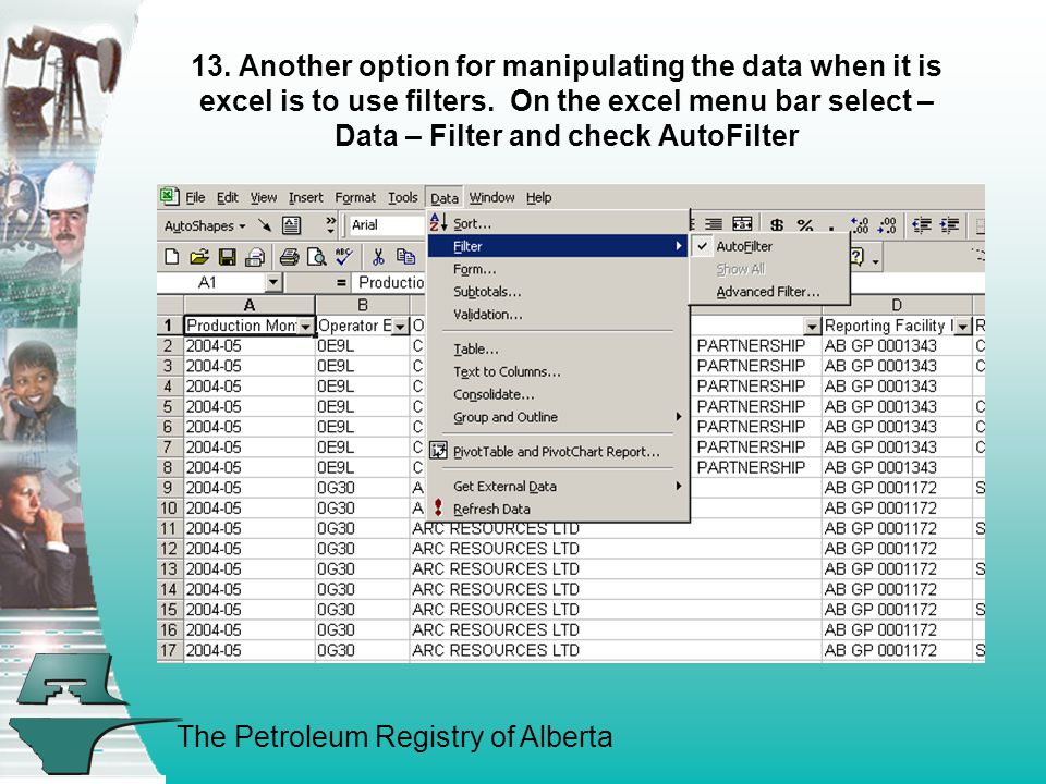 The Petroleum Registry of Alberta 13. Another option for manipulating the data when it is excel is to use filters. On the excel menu bar select – Data