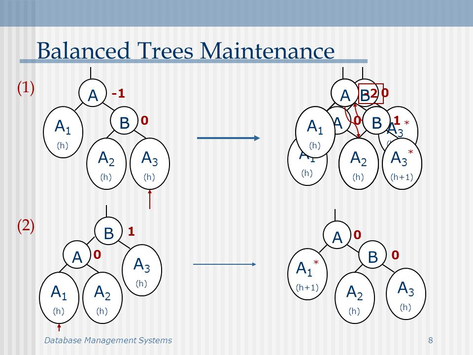 Database Management Systems9 Balanced Trees Maintenance (cont.) A BB C A 1 (h) A 2 (h-1) A 3 (h-1) A 4 (h) 0 0 A BB C A 1 (h) A 2 (h-1) A 3 * (h) A 4 (h) 1 -2 A BB C A 1 (h) A 2 (h-1) A 3 * (h) A 4 (h) 1 -2 1 A BB C A 1 (h) A 2 (h-1) A 3 * (h) A 4 (h) 0 0 A BB C A 1 (h) A 2 (h-1) A 3 (h-1) A 4 (h) 0 0 0 A BB C A 1 (h) A 2 * (h) A 3 (h-1) A 4 (h) 0 (3) (4)