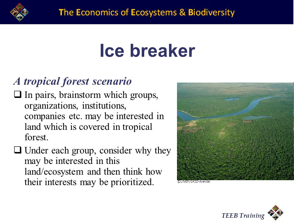 TEEB Training Ice breaker A tropical forest scenario In pairs, brainstorm which groups, organizations, institutions, companies etc.