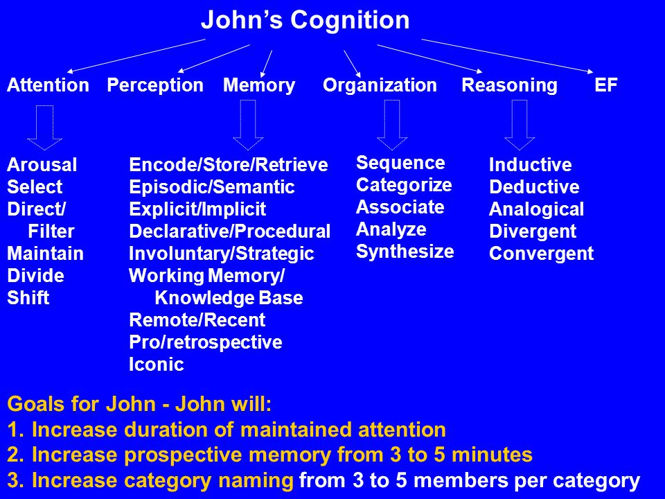 Johns Cognition AttentionPerceptionMemoryOrganizationReasoningEF Arousal Select Direct/ Filter Maintain Divide Shift Encode/Store/Retrieve Episodic/Se