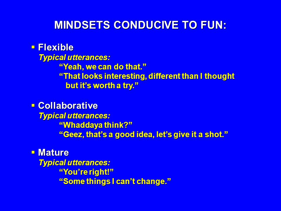MINDSETS CONDUCIVE TO FUN: Flexible Flexible Typical utterances: Yeah, we can do that. That looks interesting, different than I thought but its worth