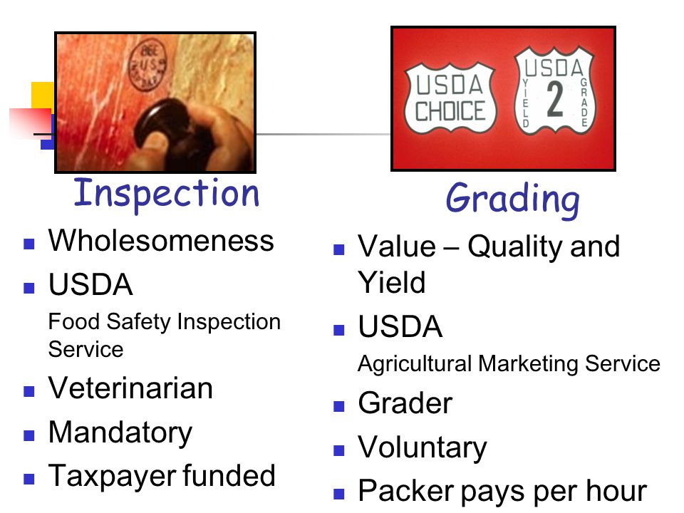 Inspection Wholesomeness USDA Food Safety Inspection Service Veterinarian Mandatory Taxpayer funded Grading Value – Quality and Yield USDA Agricultural Marketing Service Grader Voluntary Packer pays per hour