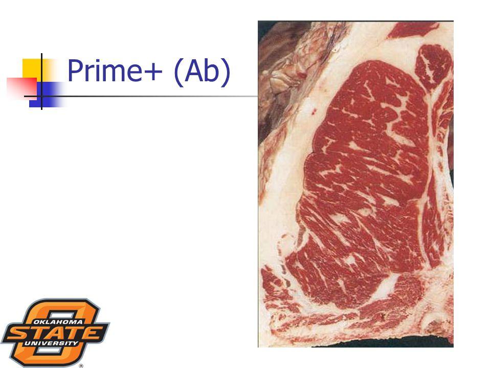 Prime+ (Ab)