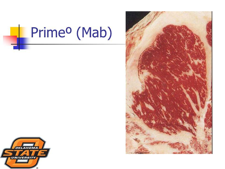 Primeº (Mab)