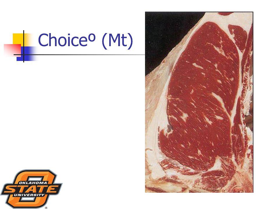 Choiceº (Mt)