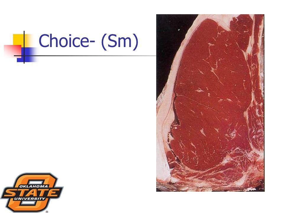 Choice- (Sm)