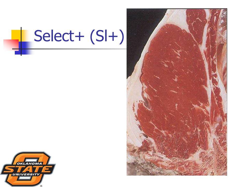 Select+ (Sl+)