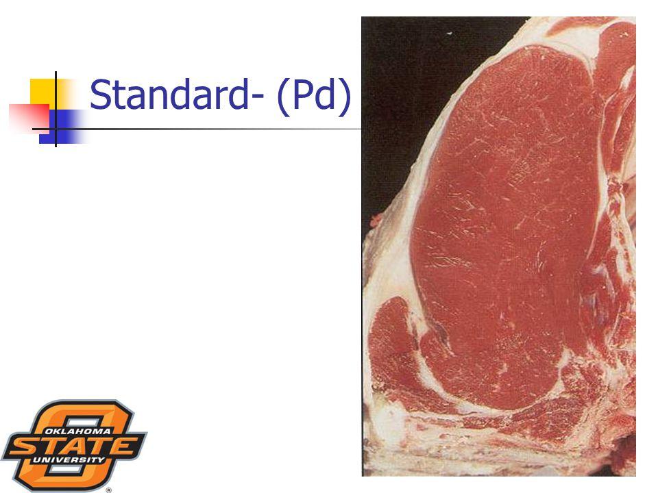 Standard- (Pd)