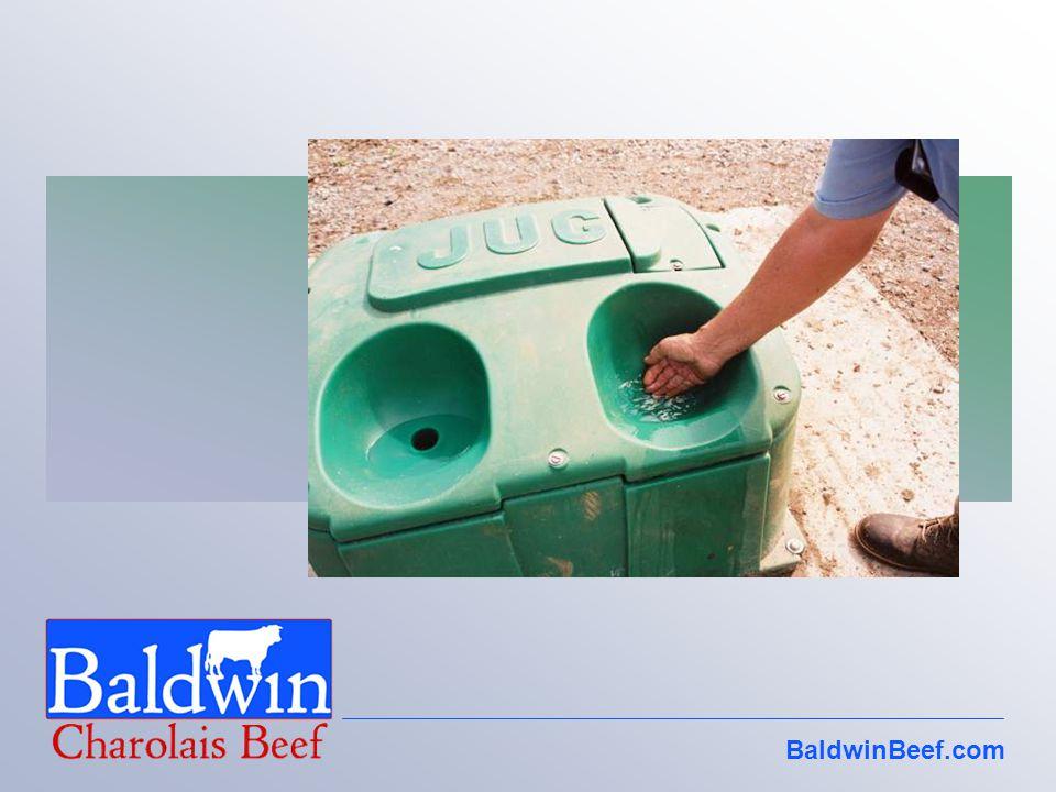 BaldwinBeef.com