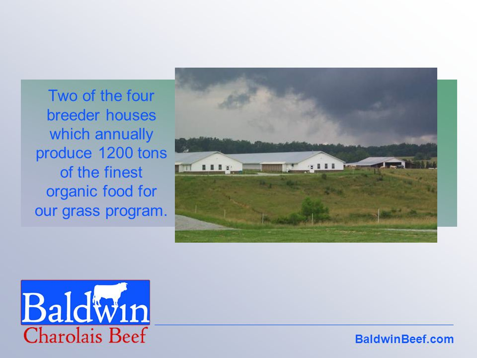 Two of the four breeder houses which annually produce 1200 tons of the finest organic food for our grass program.