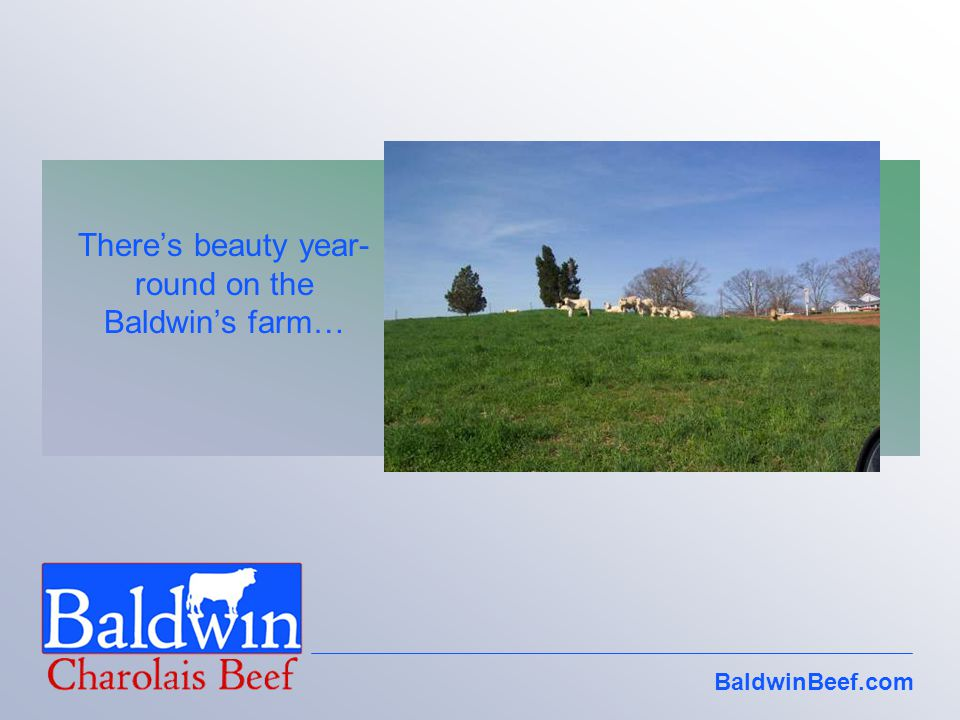 Theres beauty year- round on the Baldwins farm…