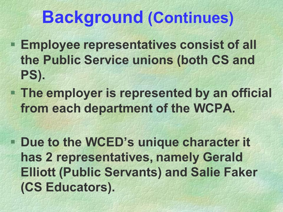 Background (Continues) §Employee representatives consist of all the Public Service unions (both CS and PS). §The employer is represented by an officia