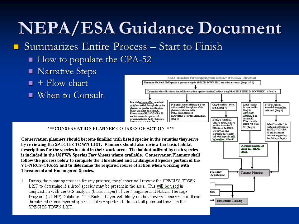 Summary Process – 5 Options cont.