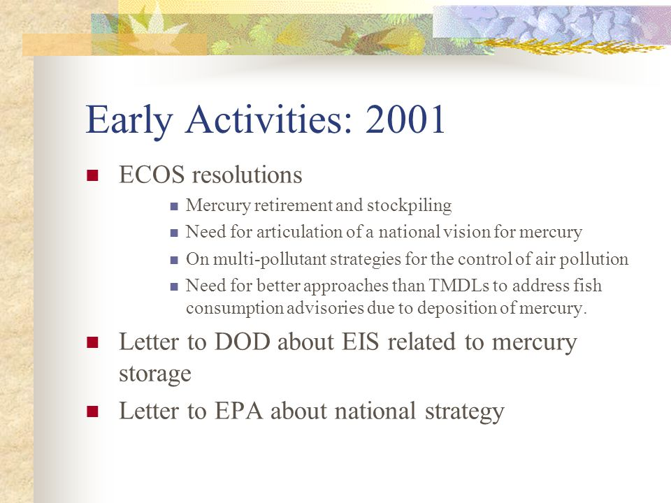 Early Activities: 2001 ECOS resolutions Mercury retirement and stockpiling Need for articulation of a national vision for mercury On multi-pollutant strategies for the control of air pollution Need for better approaches than TMDLs to address fish consumption advisories due to deposition of mercury.