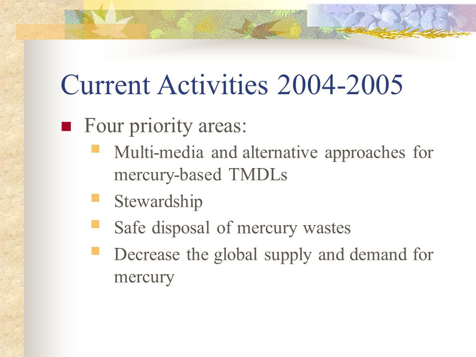 Current Activities 2004-2005 Four priority areas: Multi-media and alternative approaches for mercury-based TMDLs Stewardship Safe disposal of mercury wastes Decrease the global supply and demand for mercury