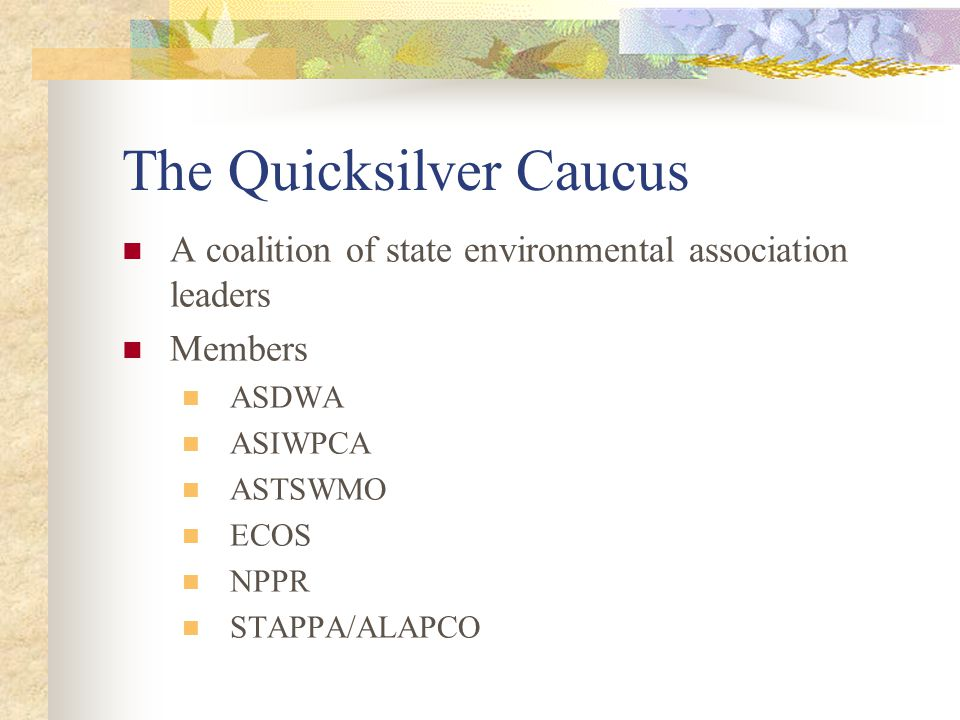 The Quicksilver Caucus A coalition of state environmental association leaders Members ASDWA ASIWPCA ASTSWMO ECOS NPPR STAPPA/ALAPCO