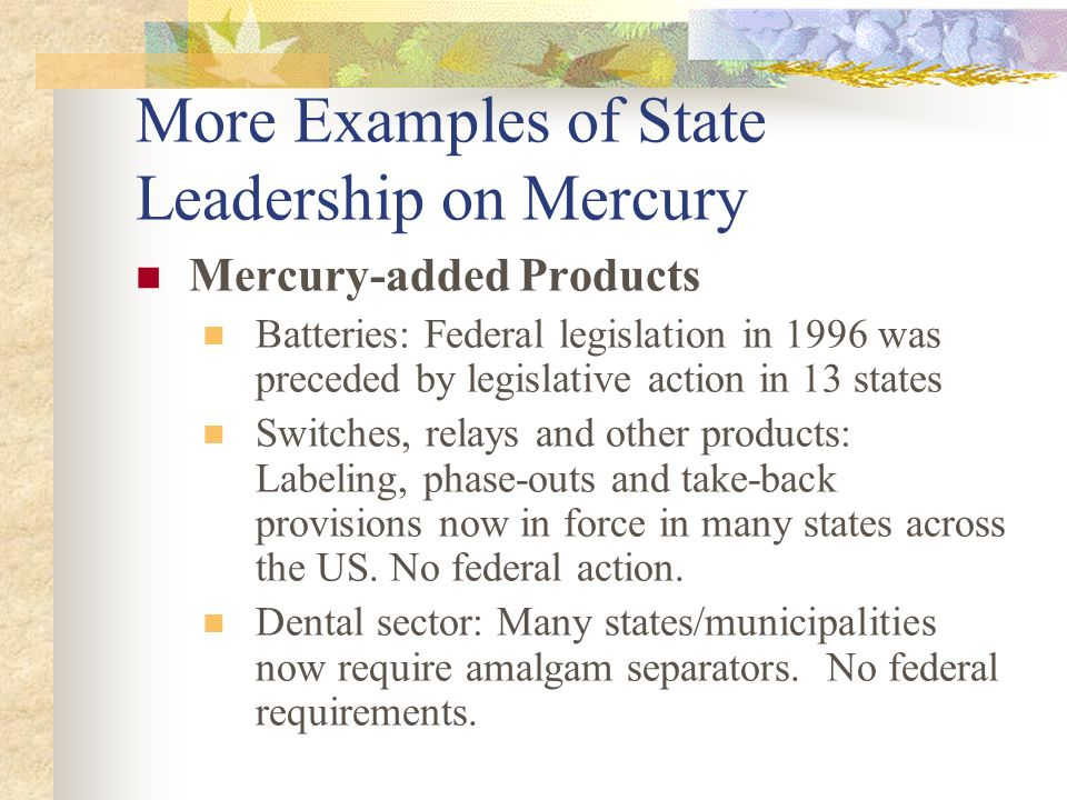More Examples of State Leadership on Mercury Mercury-added Products Batteries: Federal legislation in 1996 was preceded by legislative action in 13 states Switches, relays and other products: Labeling, phase-outs and take-back provisions now in force in many states across the US.