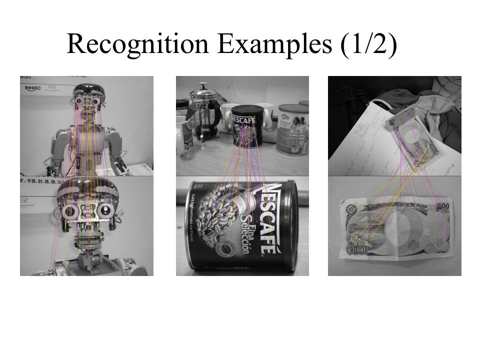 Recognition Examples (2/2)