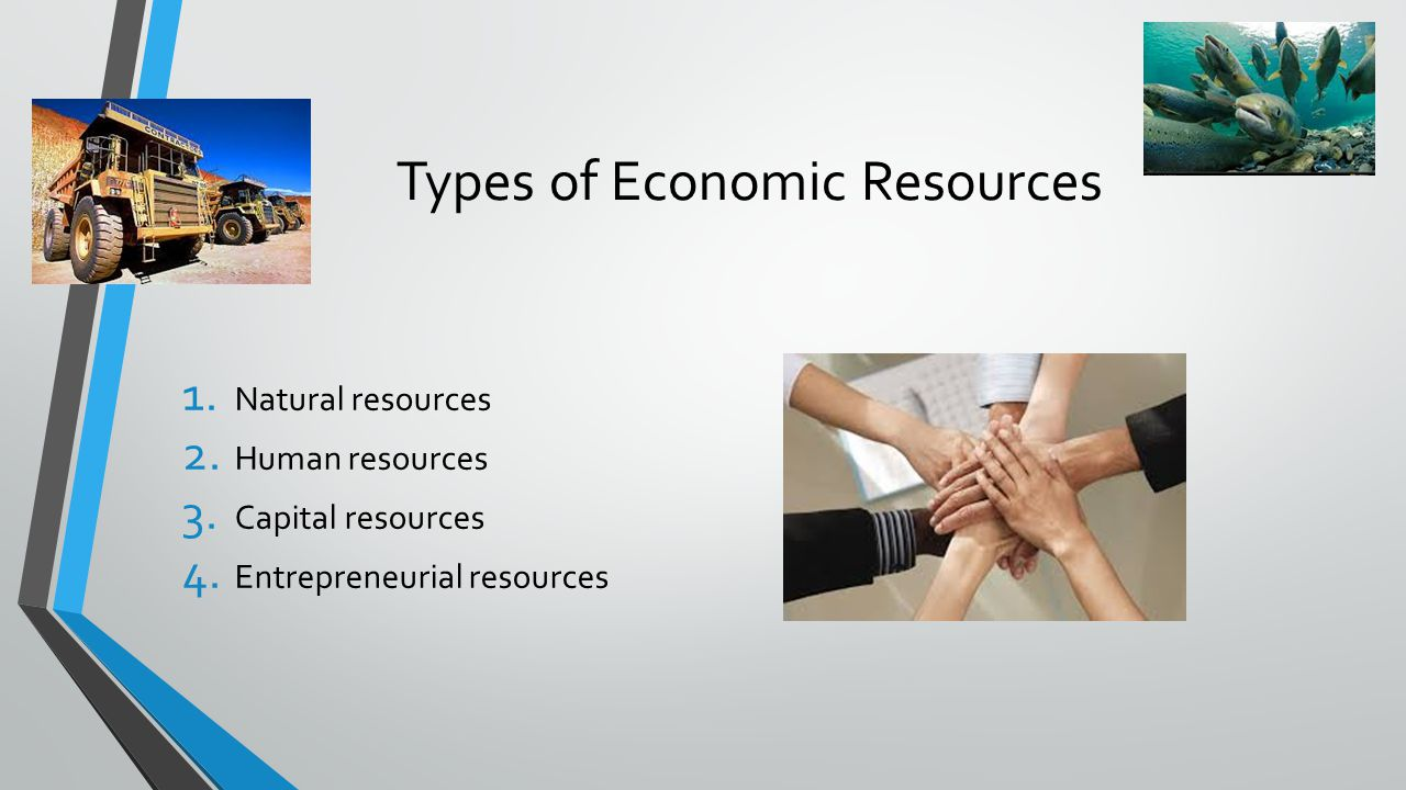 Identifying Economic Resources Think about businesses that you are familiar with Use those businesses to complete the following worksheet Finish for homework
