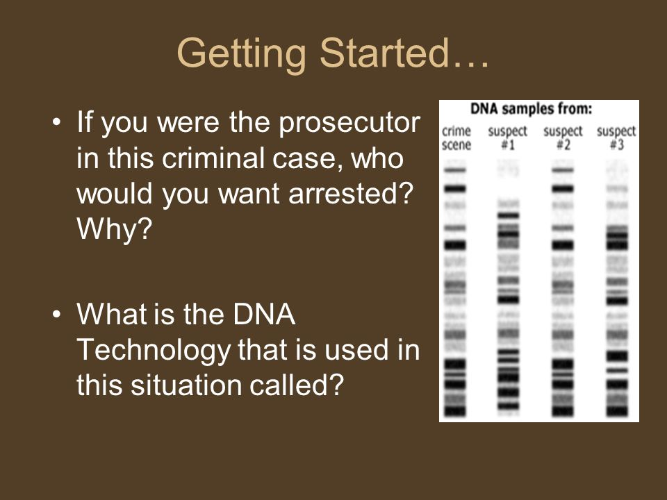 Getting Started… If you were the prosecutor in this criminal case, who would you want arrested? Why? What is the DNA Technology that is used in this s