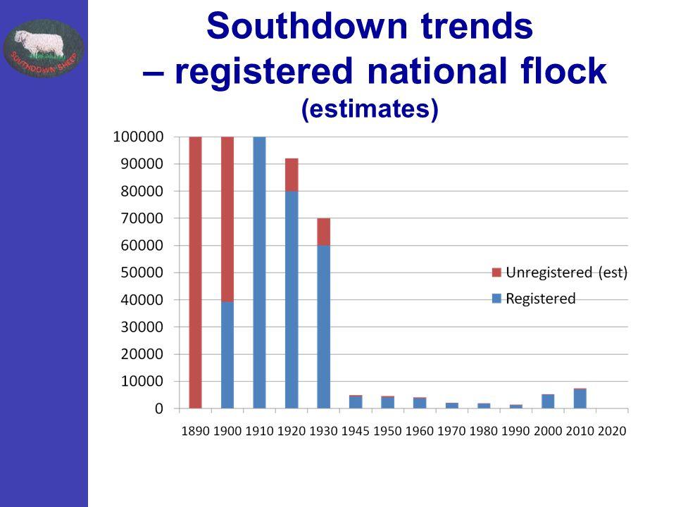 Southdown trends – registered national flock (estimates)