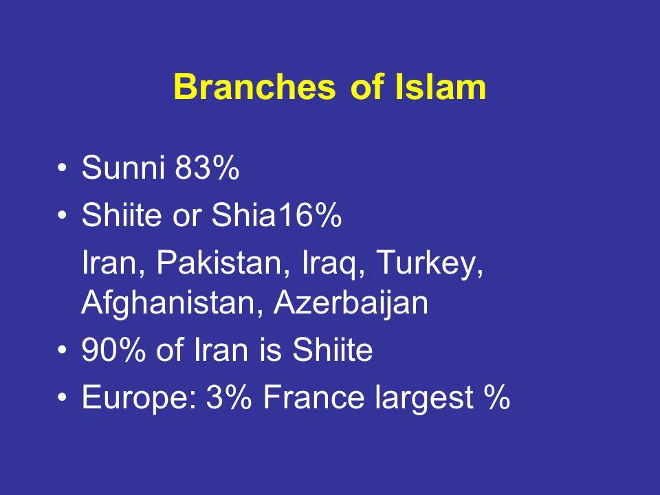 Branches of Islam Sunni 83% Shiite or Shia16% Iran, Pakistan, Iraq, Turkey, Afghanistan, Azerbaijan 90% of Iran is Shiite Europe: 3% France largest %