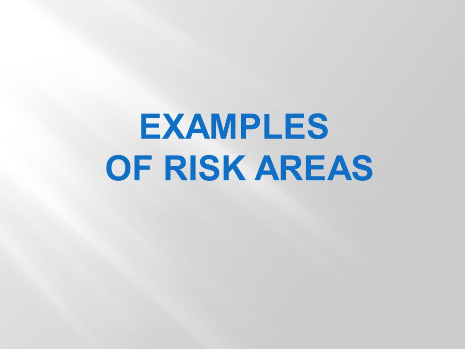 EXAMPLES OF RISK AREAS
