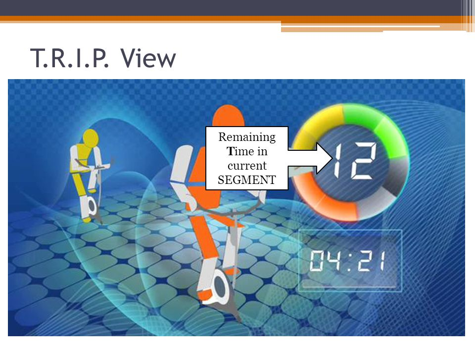 T.R.I.P. View Remaining Time in current SEGMENT