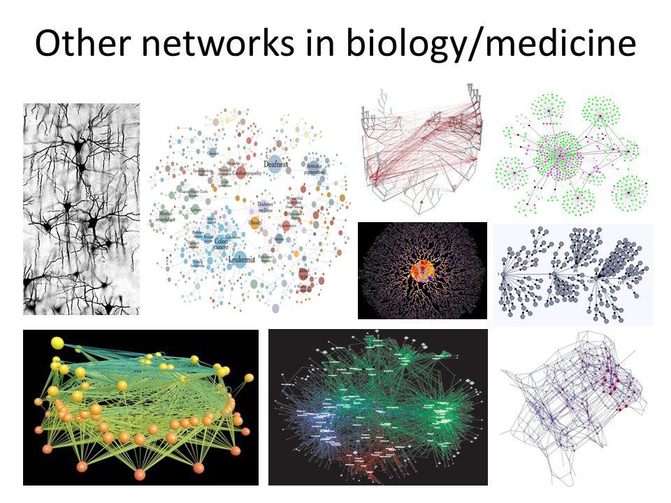 Other networks in biology/medicine