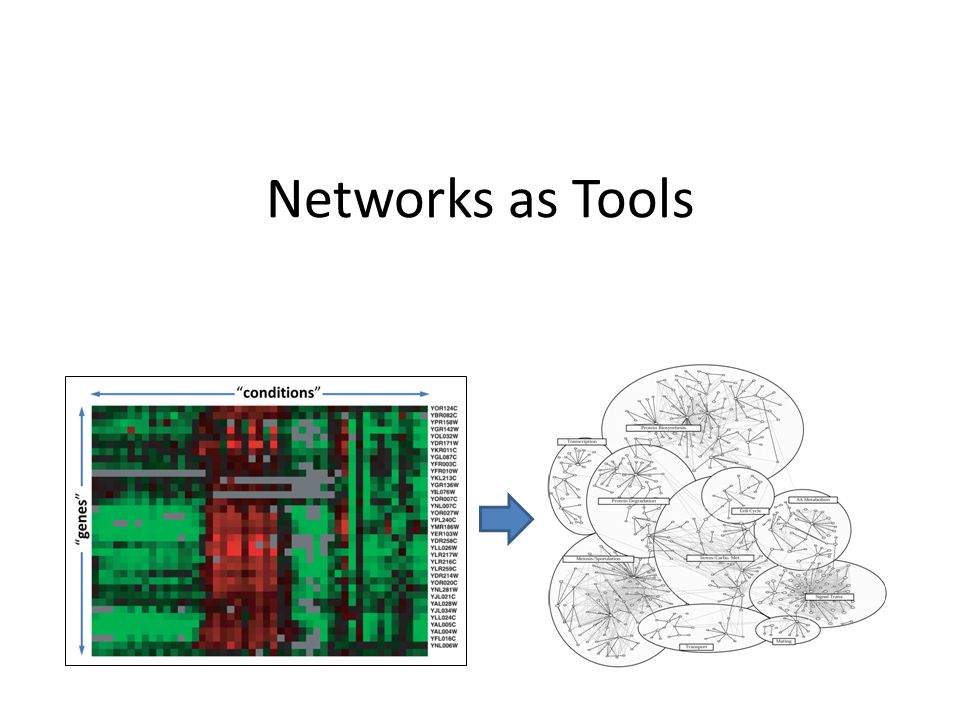 Networks as Tools