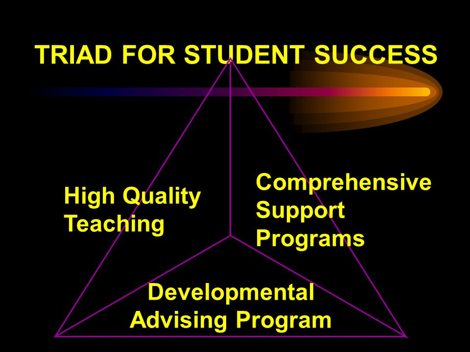 TRIAD FOR STUDENT SUCCESS High Quality Teaching Comprehensive Support Programs Developmental Advising Program